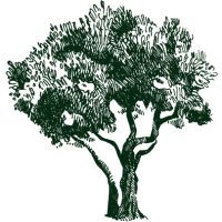 natureblessed.gr_logo-dark-green