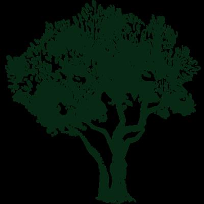 natureblessed.gr_retina-logo-dark-green